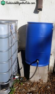 rain barrel connected to IBC tote